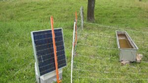 Solar Fencing for Farms? Moderning the Argiculture Industry